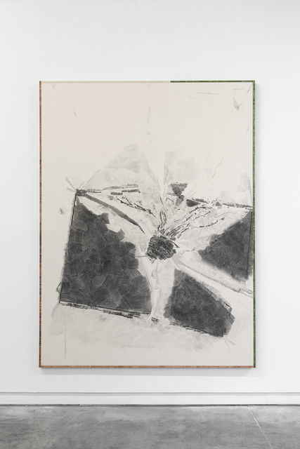 , 'The plant proceeded to tip as I drew it, at which point I made the decision to let it fall as I felt it would improve the composition,' 2016, Daniel Faria Gallery
