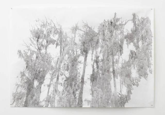 , 'Big Cypress I, Caddo,' 2013, Cris Worley Fine Arts