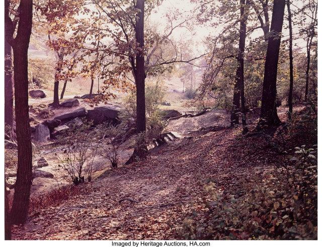 Evelyn Hofer, 'Numnber 214 (Central Park, New York)', circa 1965, Heritage Auctions