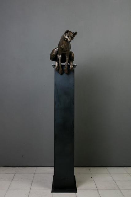 , 'Zorro,' 2015, Terreno Baldío