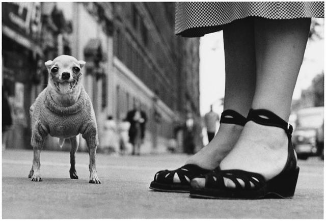 Elliott Erwitt, 'New York City, 1946', 1946, Jackson Fine Art
