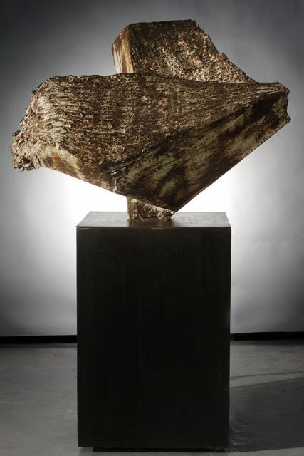 , 'Echo of the Roar,' 2013, Jeffrey Spahn Gallery