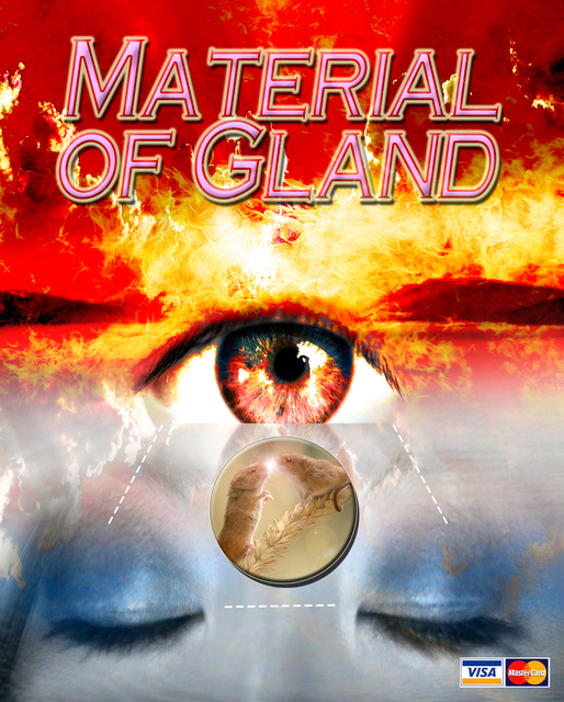 , 'Material of The Gland,' 2015, envoy enterprises