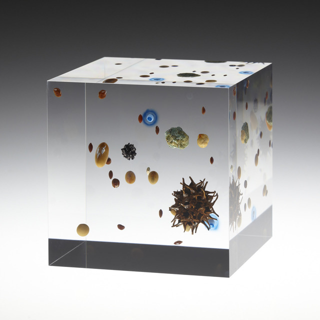 , 'Beans Cosmos,' 2013, Tomio Koyama Gallery