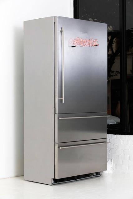 ", 'Psychic Refrigerator B: ""Evolution in Jars."" 20111357, New York,' 2017, Fisher Parrish Gallery"