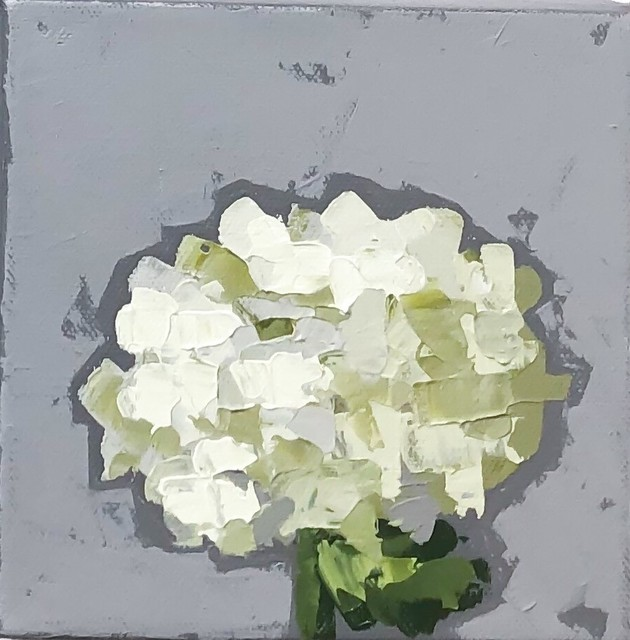 Christie Younger, 'Little Green Hydrangea No. 1', 2019, Shain Gallery