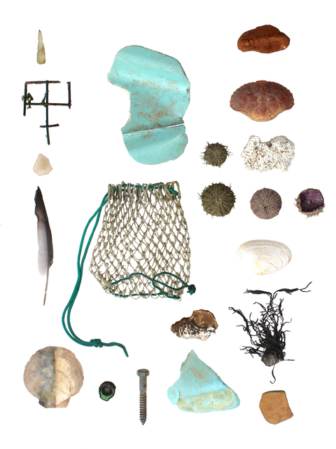 Richelle Gribble, 'Objects of Land and Sea III', 2016, Jonathan Ferrara Gallery