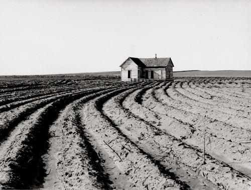 , 'Tractored Out, Childress County, TX,' 1938, Scott Nichols Gallery