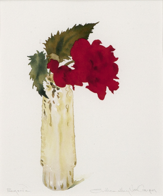 Susan Headley Van Campen, 'Begonia', 2020, Drawing, Collage or other Work on Paper, Watercolor on paper, Dowling Walsh