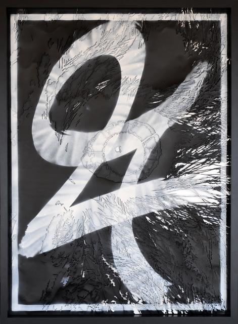 , 'Aegolius funereus stencils,' 2016, Galleria Heino