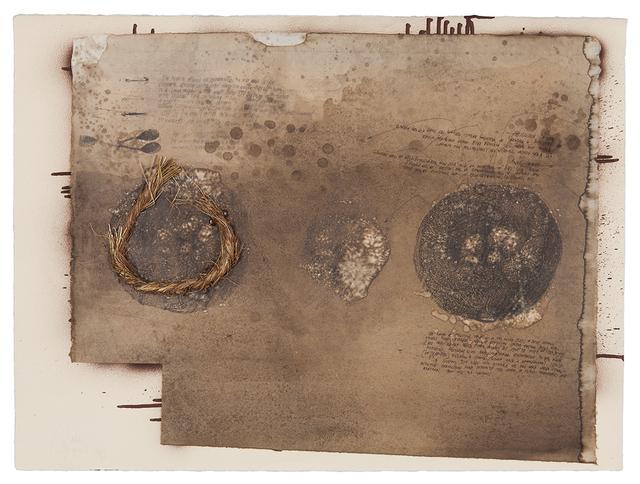 , 'Nest,' 2003, Galerie Nathalie Obadia