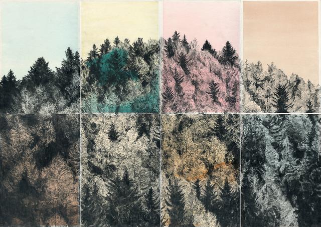 , 'Apologie des Zufälligen (Begegnung im Walde 01),' 2017, Christine König Galerie