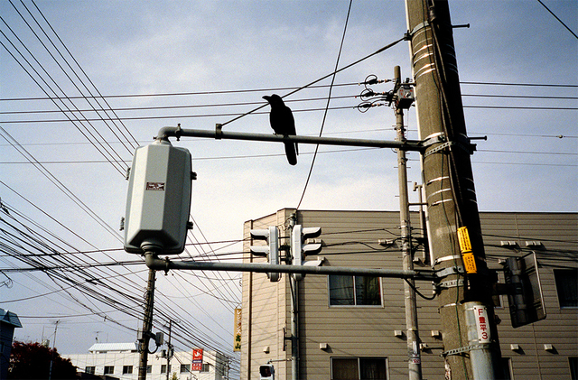 , 'Tokyo Morning,' 2002, Spaces Corners