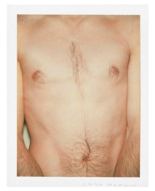 Andy Warhol, 'Polaroids Photograph, Sex Parts: Torso', 1977, Caviar20