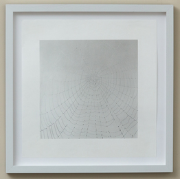 Sally Gall, 'Web,' 2010, Friends Seminary: Benefit Auction 2017