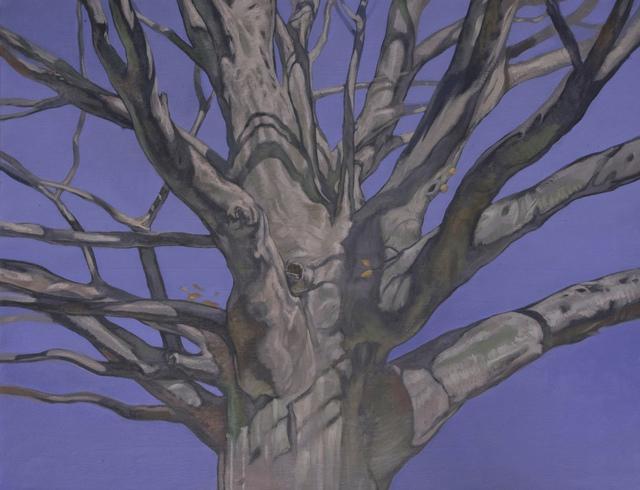 , 'Beech,' 2012, Greg Thompson Fine Art