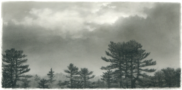 , 'Pine, clearing sky,' 2015, DANESE/COREY