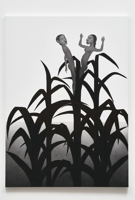 Rune Mields, 'Genesis: Die Früchte der numinosen Pflanze (Salomonen)', 2019, Galerie Judith Andreae