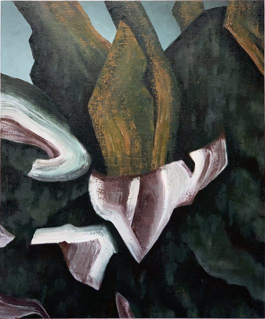 Giovanni Pasini, 'Indigenous Flora ', 2019, Area35 Art Gallery