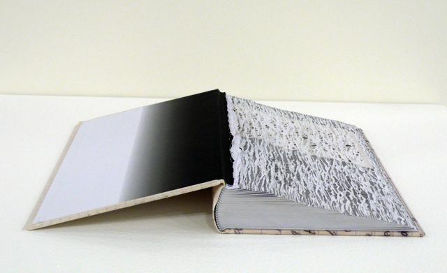 Buzz Spector, 'Efface Nabokov', 2014, Bruno David Gallery