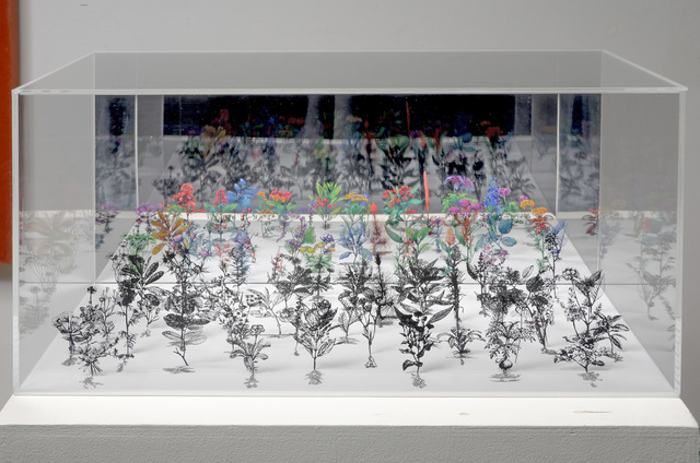 , 'Flowerbox 3,' 2008, Shoshana Wayne Gallery