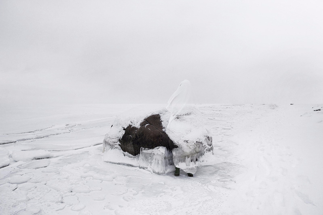 , 'Elephant Island (from the series, the Blind),' 2010, Mizuma Art Gallery