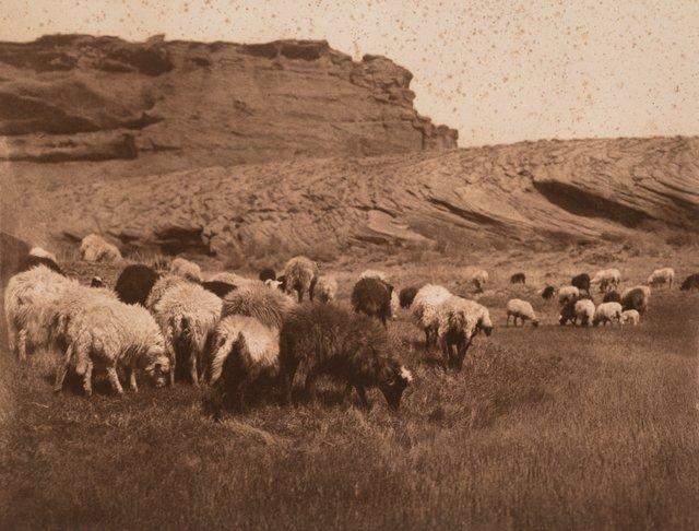 Edward Sheriff Curtis, 'Navaho Flocks, Getting Water-Havasupai, and Pakit-Maricopa (3 works)', Heritage Auctions