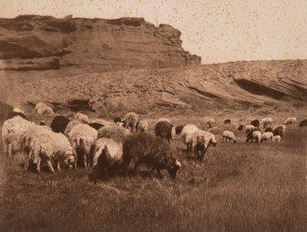 Navaho Flocks, Getting Water-Havasupai, and Pakit-Maricopa (3 works)