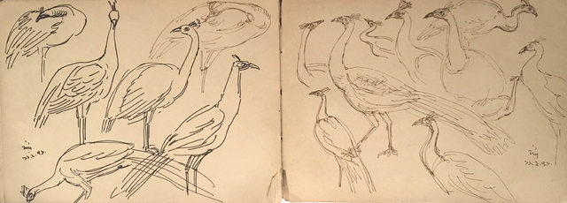 , 'Birds drawing in ink on paper by Bengal School Artist Indra Dugar, influenced by Artist Nandalal Bose,' 1976, Gallery Kolkata