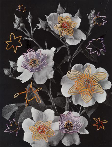 Alexis Anne Mackenzie, 'Welcome Stranger ', 2014, Eleanor Harwood Gallery