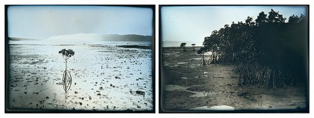 , 'Nagura Bay, Ishigaki, January 13, 15  ,' 2020, Purdy Hicks Gallery