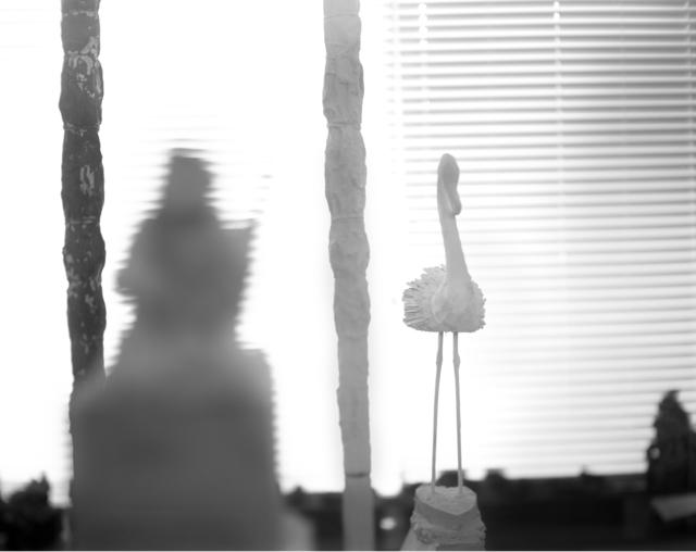 Sally Mann, 'Remembered Light, Untitled (Flamingo on Heart Base)', 2012, Gagosian