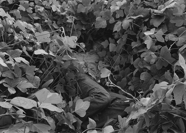 , 'Reuben, Athens, GA (man in kudzu),' 1995, Yancey Richardson Gallery