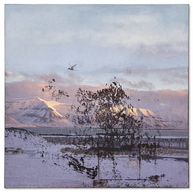 , 'Pyramiden (bird),' 2016, Miller Yezerski Gallery