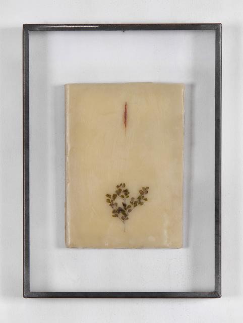 Gregorio Botta, 'Emily's Garden 2', 2018, Mixed Media, Pigment and leaves on wax in artist frame, Montoro12 Contemporary Art