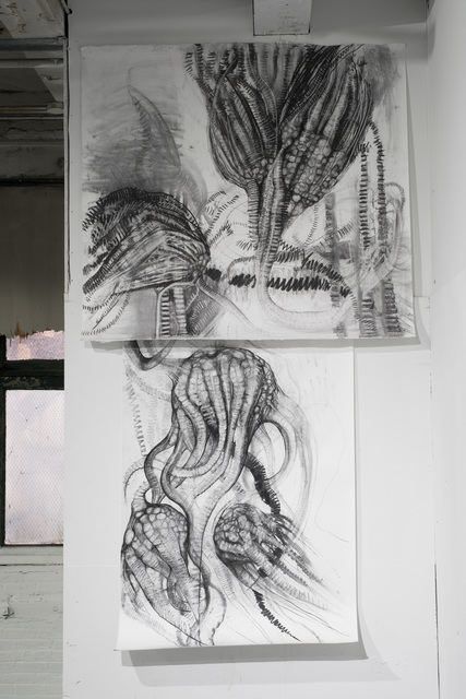 , 'Crinoid (Indiana) and Crinoid (West Texas) sections of Back to the Drawing Board Fossil Matrix Wall,' 2014, Proto Gallery