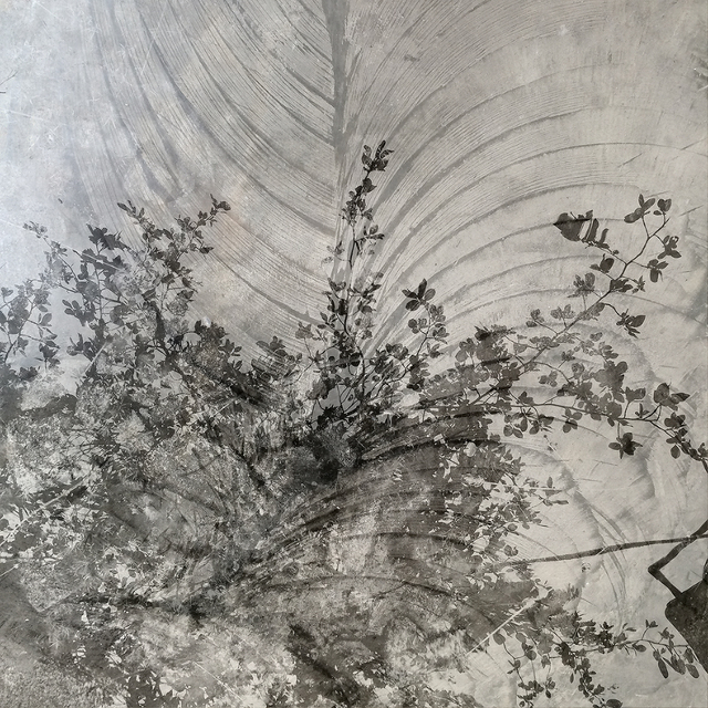 , 'Tree,' 2016, DENK Gallery