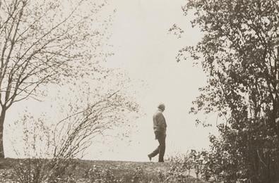 Untitled [Portrait of Frank Lloyd Wright]