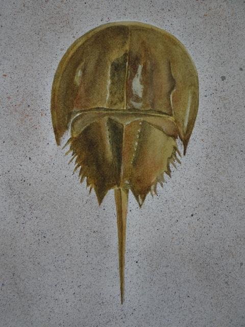 , 'Ancient Mariner,' 2017, Peninsula Gallery