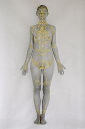 Body Systems II