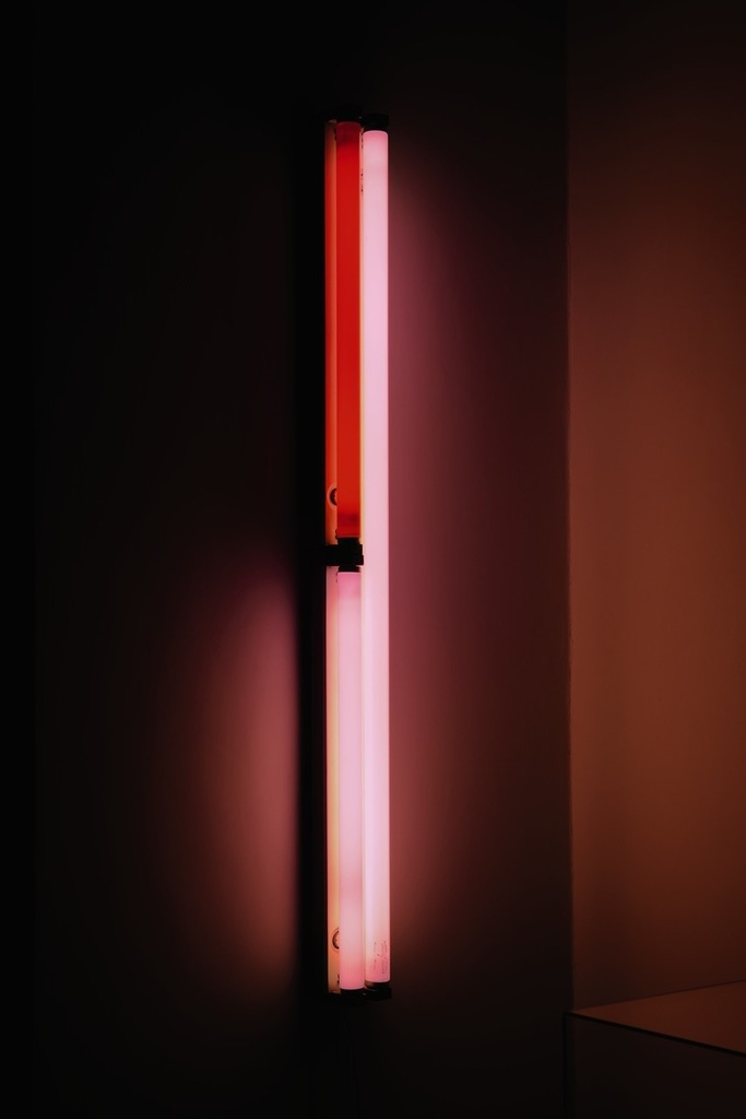 Dan Flavin: Untitled, 1969