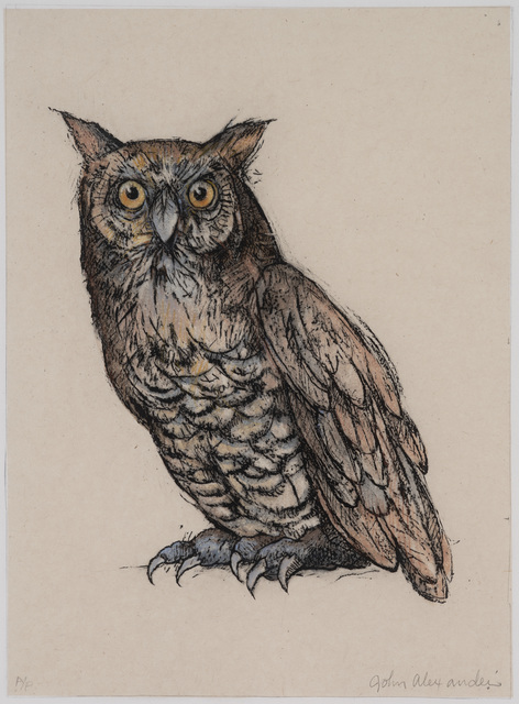 , 'Wise Old Owl,' 2009, Tayloe Piggott Gallery