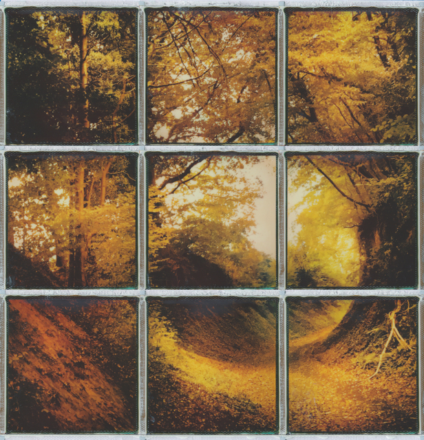 , 'Every Path tells... - Contemporary, Conceptual, Women, Polaroid, 21st Century, Nature, Future,' 2017, Instantdreams