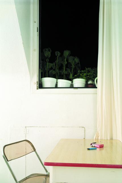 , 'Still-Life Nr.5,' 2002, Gallery Hyundai