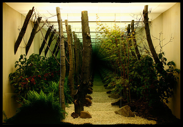 , 'Mu Rung Do Won (Infinite Garden),' 2008, C. Grimaldis Gallery