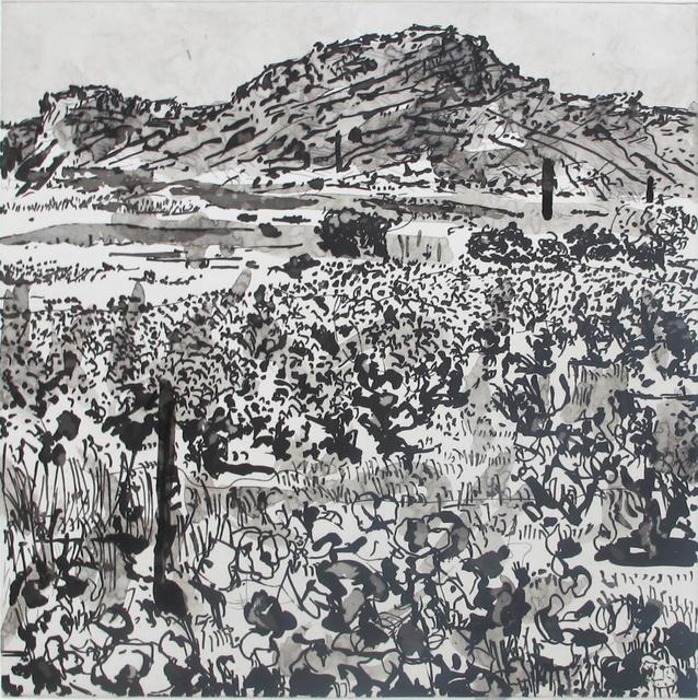, 'West Coast Series (Set of 5 Prints), Skurfburg,' 2010, David Krut Projects