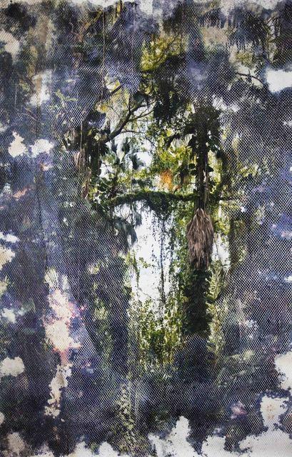 , 'Wai'anae 88581,' 2016, Yossi Milo Gallery