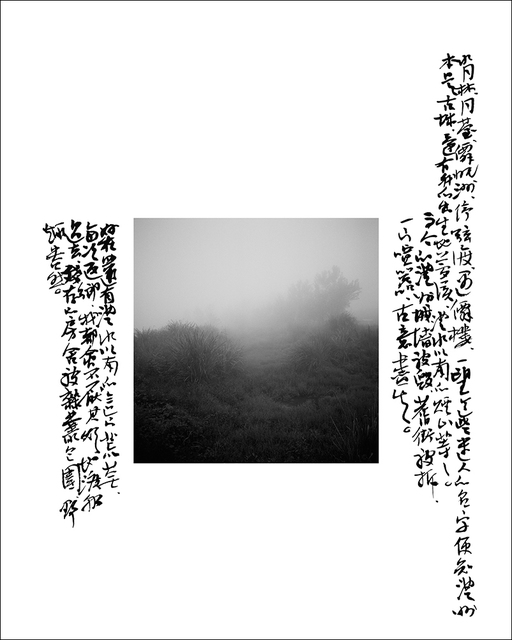 , 'Bushes and Weeds in Linan,' 2010, see+ Gallery