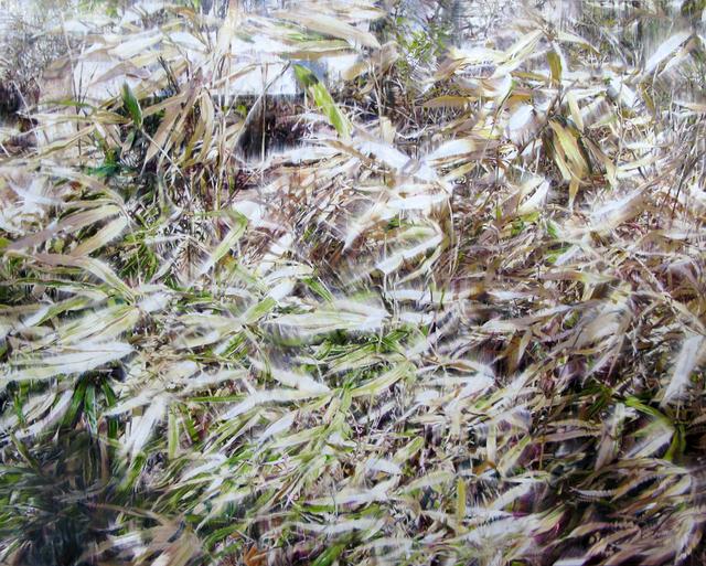 Yoon Suk One, 'Dry Plant-18022', 2018, Gallery Baton