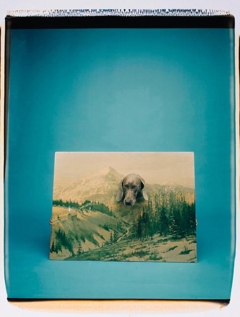 , 'Landscape Portrait,' 1988, Senior & Shopmaker Gallery